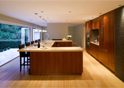 modern new kitchen renovation
