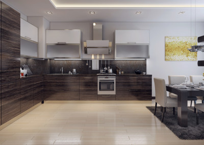 Dining kitchen modern style